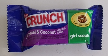 crunch-girlscouts3.jpg